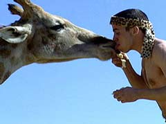 Steve-O gets some - and learns about giraffes at the same   time