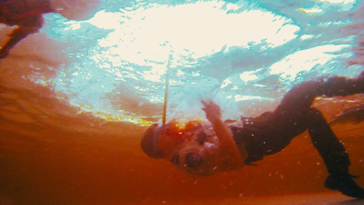 Piranha 3DD (2012) - User Reviews - imdb.com
