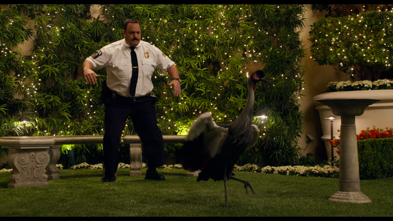 Paul Blart: Mall Cop 2 (Blu-ray) : DVD Talk Review of the Blu-ray