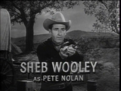 Image result for sheb wooley