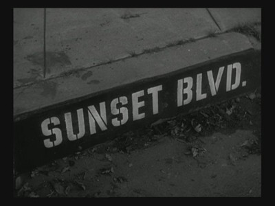 billy wilder sunset boulevard essay Sunset boulevard (1950) director: billy wilder  with billy wilder, with whom he worked directly - which scenes would have music and which would not.