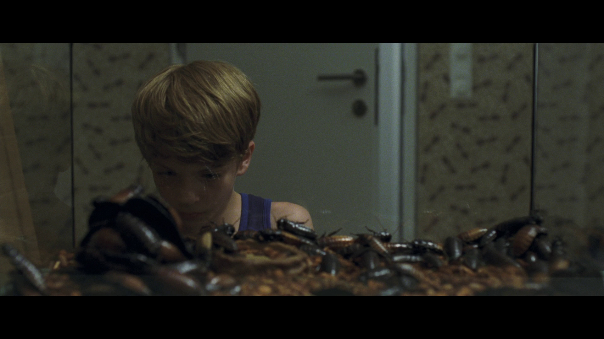 Goodnight Mommy Blu Ray Dvd Talk Review Of The Blu Ray