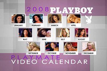 2008 nude calendars